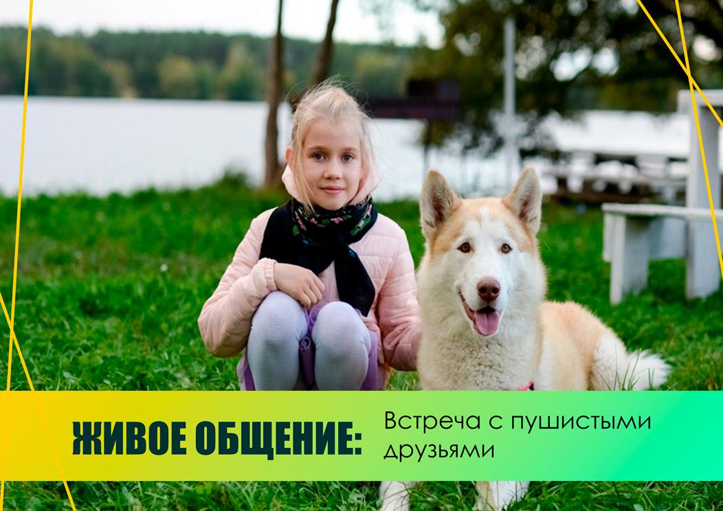 Дополнительные_услуги_14